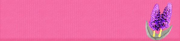 lavender-texture-header.jpg
