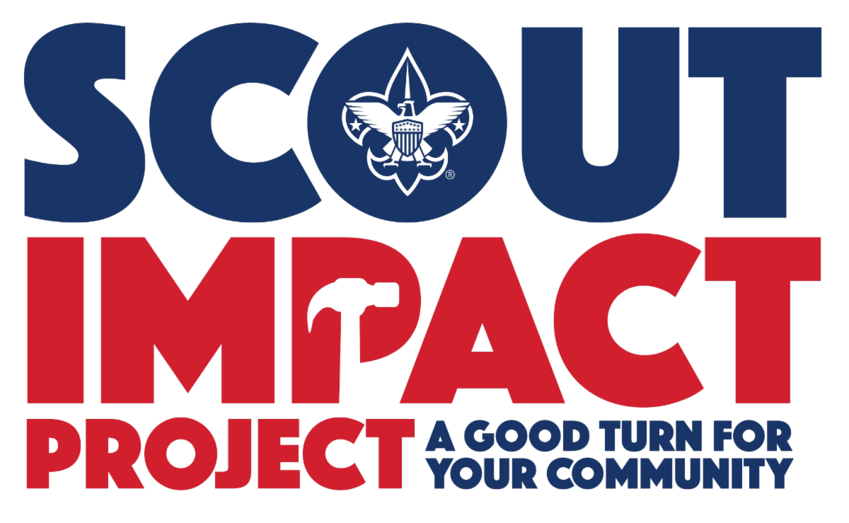 Scout Impact Project