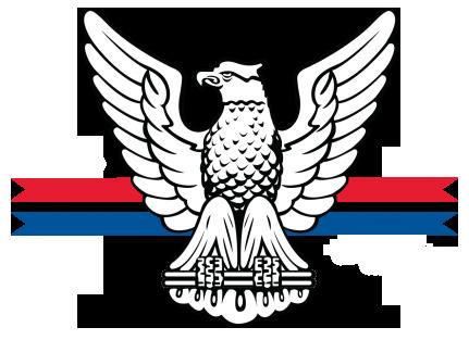 NESA Eagle Scout ESA