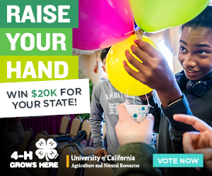 Raise your Hand - $20k