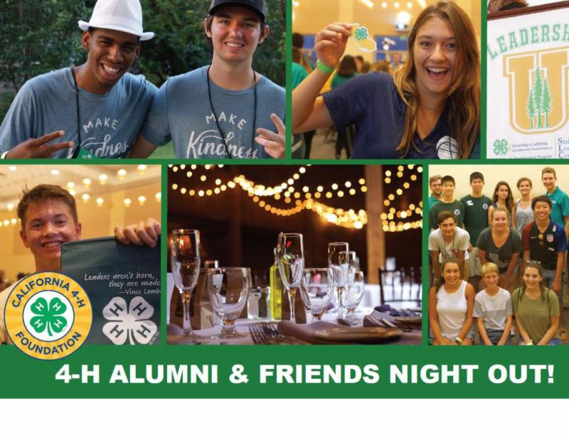 Alumni and friends night out