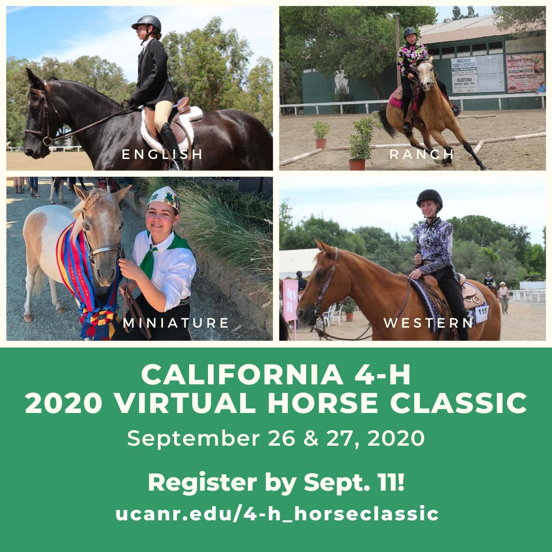 2020 Horse Classic post