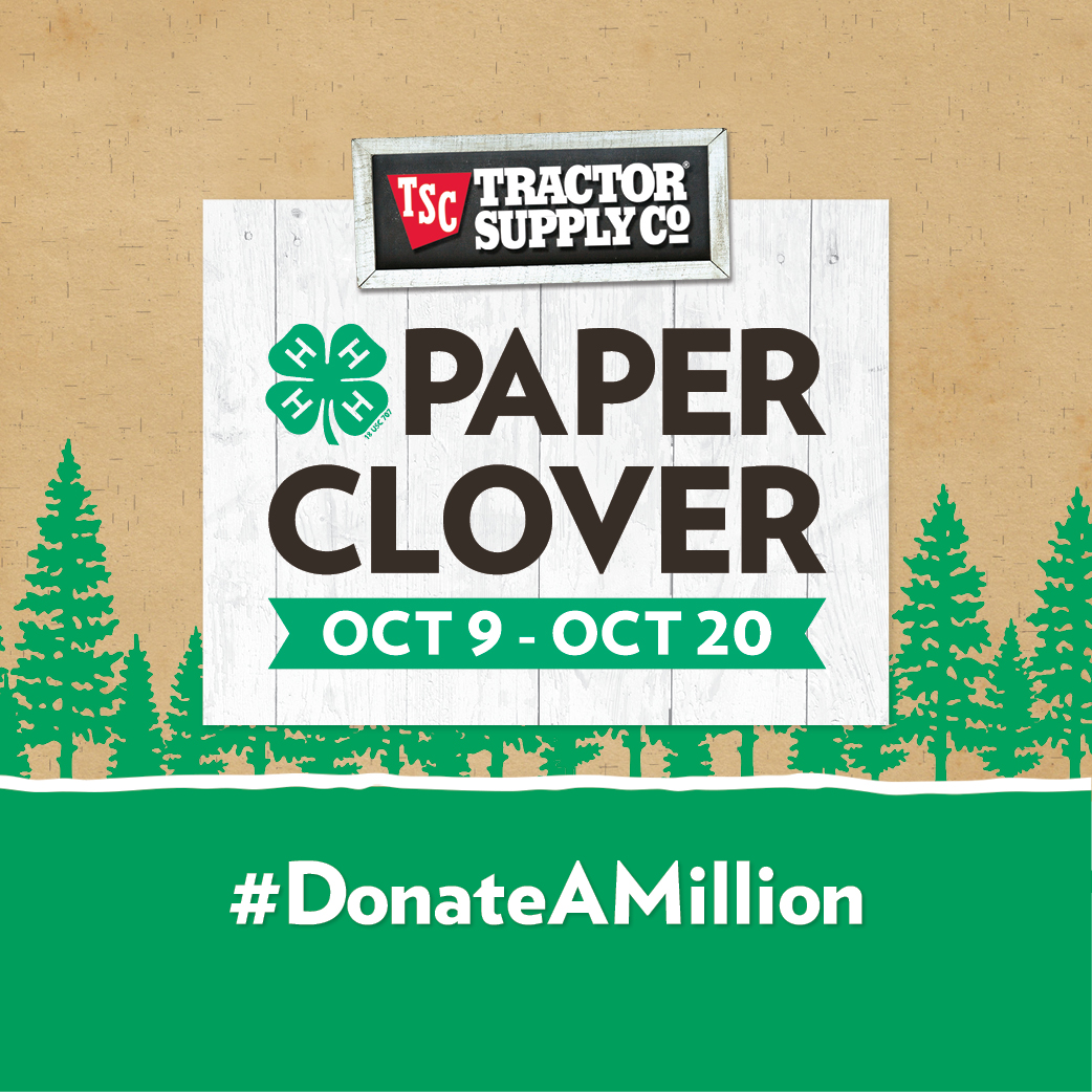 2019 Fall Paper Clover
