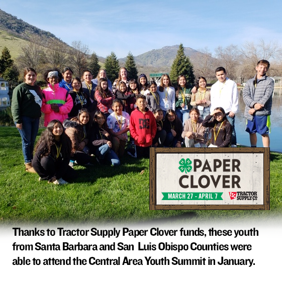 Paper Clover recipients