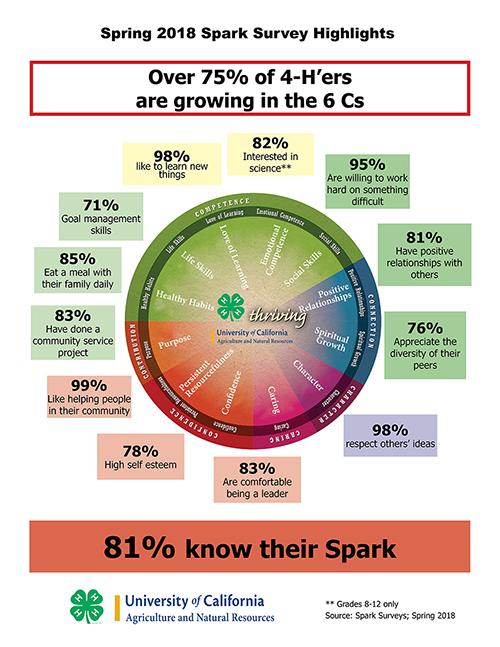 Sparks Wheel 2018