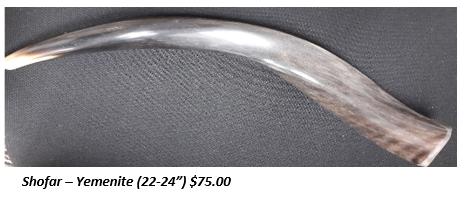 shofar 22.png
