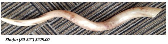 shofar 30.png