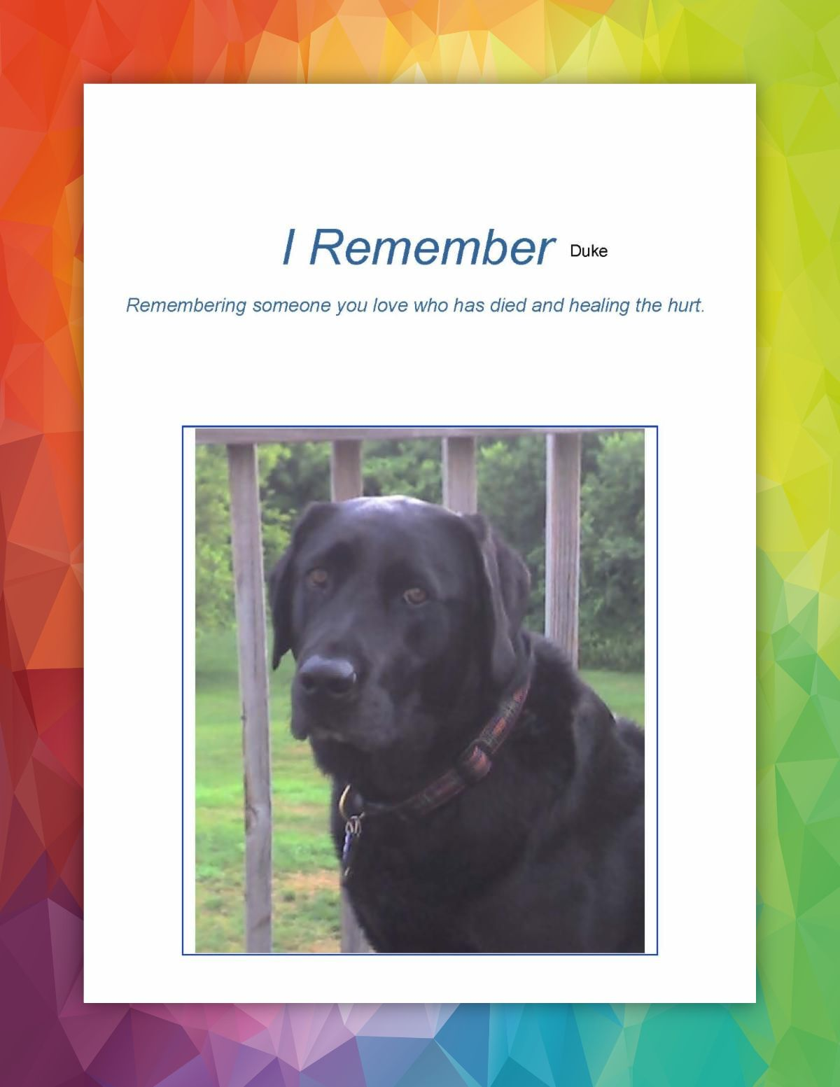 I Remember Duke sample cover with picture of a black lab just his face and shoulders with posts of a fence behind him and grass and woods background