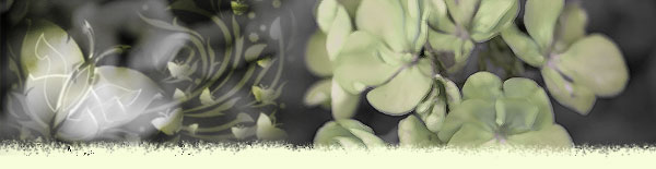 flower-butterfly-abstract.jpg