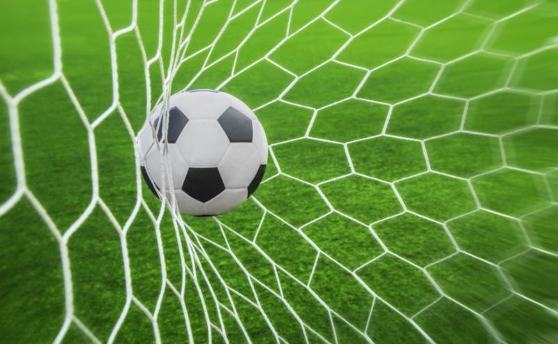 net_goal.jpg
