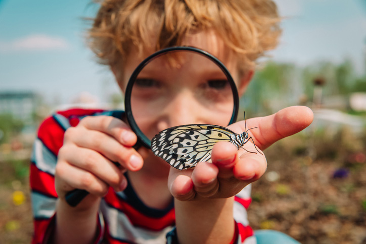 Boy looking at a butterfly with a magnifying glass