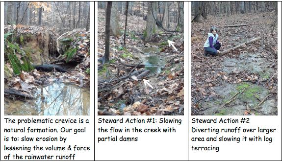 pictures of erosion and fixing it with log terracing