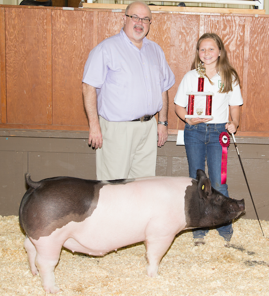 Young girl and judge with hog at livestock show