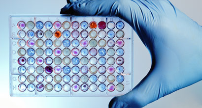 gloved hand holding colorful assay tray