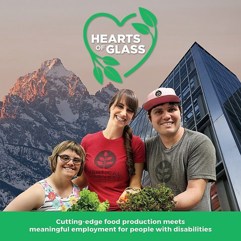 Hearts of Glass poster - 2 women and one man with disabilities standing in front of a tall building with mountains in the background
