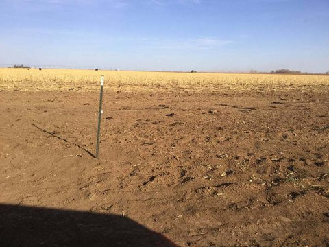 Picture of a dry brown field with a metal fence stake in it.