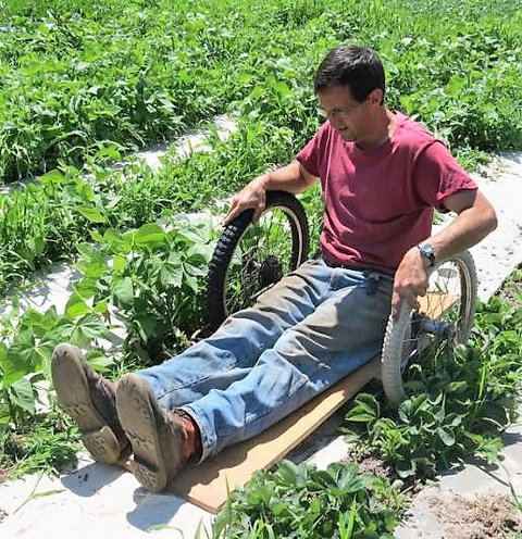 Ned Stoller sitting between garden rows on what looks like an extremely low wheelchair about 4 inches off the ground