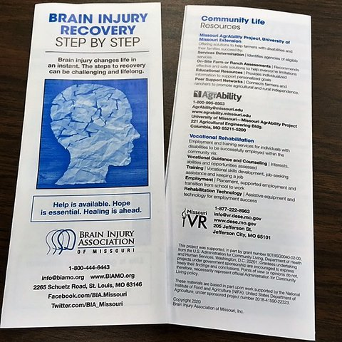Picture of a brochure with the title Brain Injury Recovery Step by Step