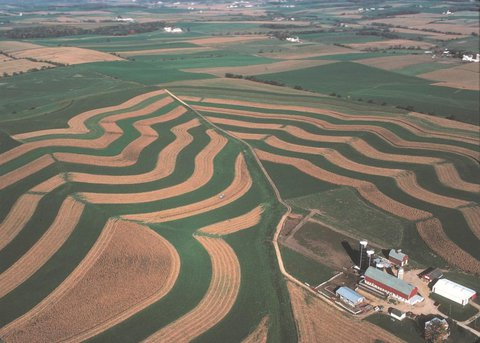 Aerial view of Wisconsin farm land showing plowed and planted rows with a large barn - sheds - and farm house.