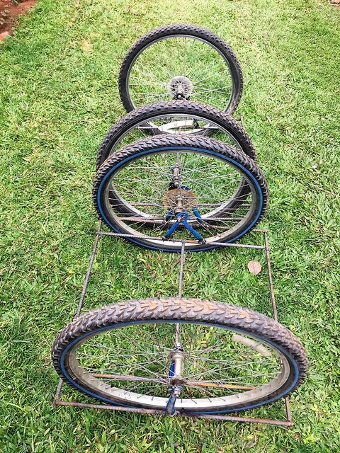 Picture of 2 BiCrawlers which are each composed of 2 bicycle tires with a low-slung rebar frame between them on green grass