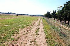 Picture of a green field with a dirt road running through it and a wire fence on the right side of the road under blue skies