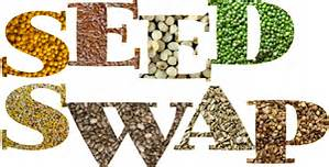 Seed Swap image with different seeds filling the words
