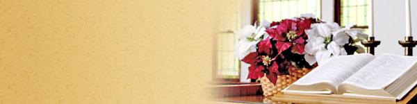 bible-banner.jpg