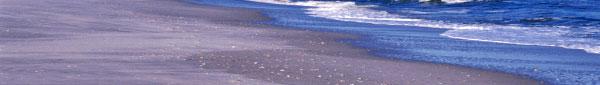 ocean-shore.jpg