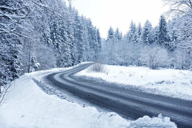 forrest_snow.jpg