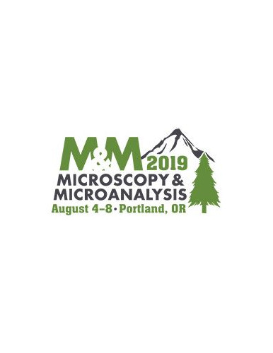 Microscopy and Microanalysis Meeting 2019