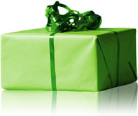 green-wrapped-present.jpg