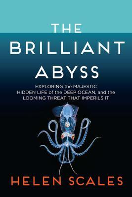 Brilliant Abyss.jpg