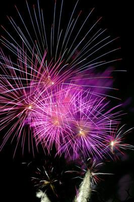 purple-fireworks.jpg