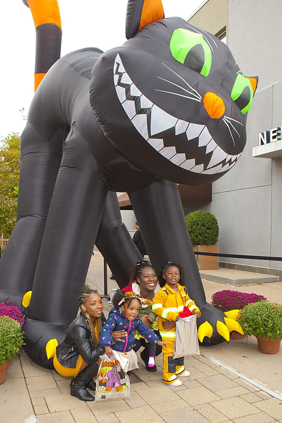 ccsc black cat