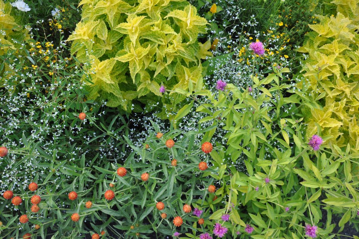untermyr garden oct