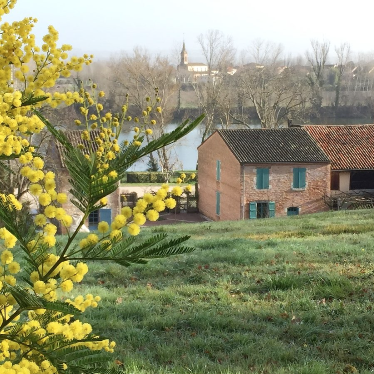Overlooking Auvillar France