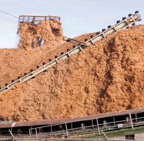 Wood Chips and Conveyor