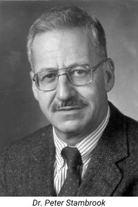 Dr. Peter Stambrook