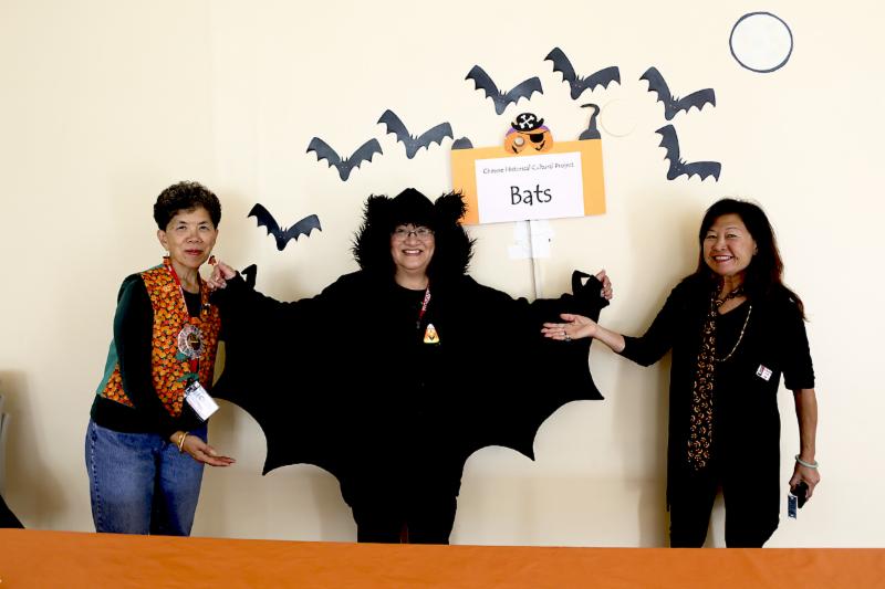 haunt bats