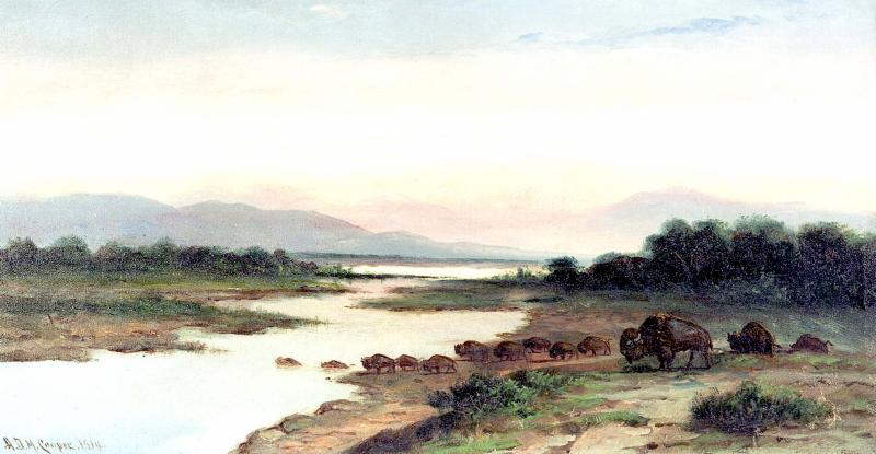 Buffalo Crossing McKay Collection