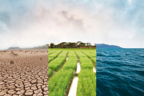 Climate change_ compare image with Drought_ Green field and Ocean metaphor Nature disaster_ World climate and Environment_ Ecology system.
