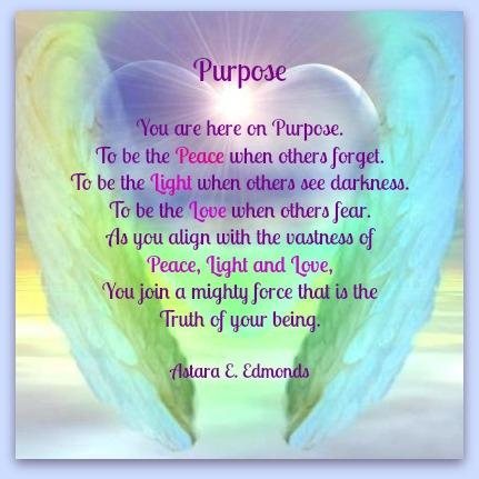 Purpose Angel wings