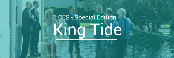 King Tide News