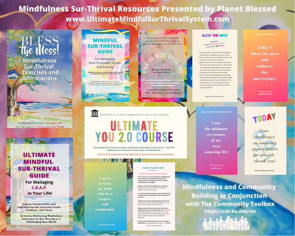 Ultimate Mindful SurThrival System