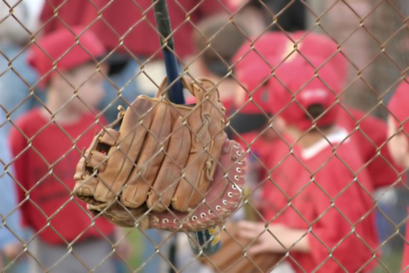 baseball_glove_fence.jpg