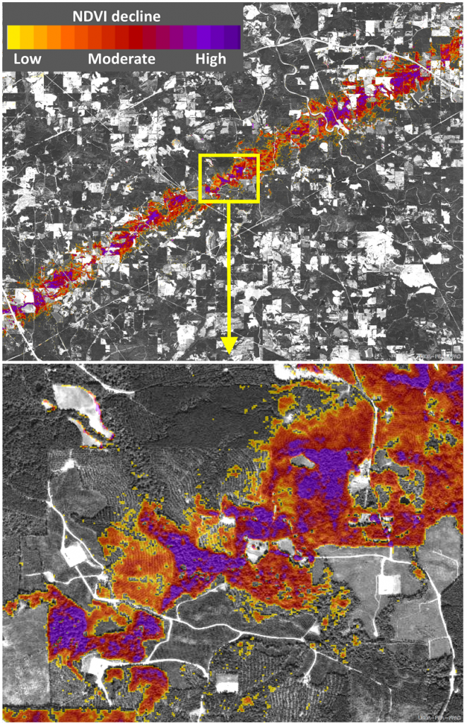 This HiForm forest change map was produced after tornadoes swept through Mississippi in April. The colors denote a relative scale of severity of likely forest disturbance. USFS image.