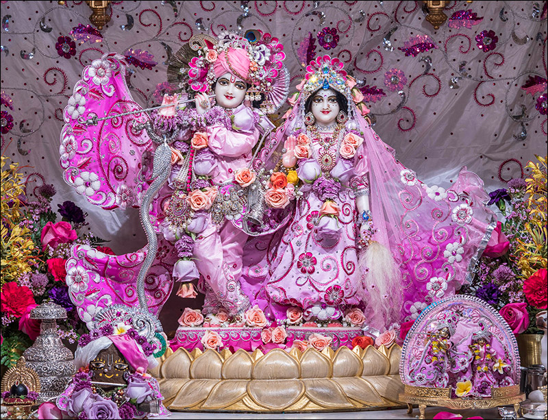 S D  Krishna Weekly Newsletter