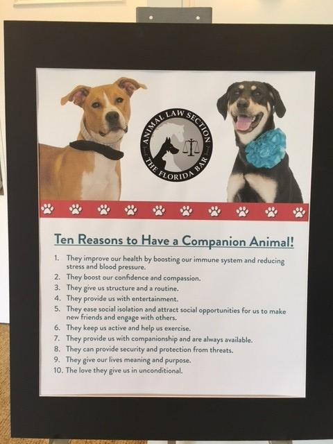 ten reasons to have a companion animal sign from puppy pit.