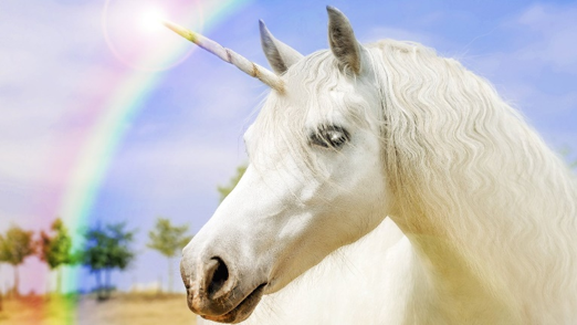 picture of a unicorn with a rainbow