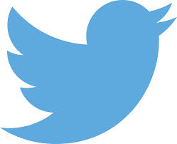 a blue twitter bird in a white square.